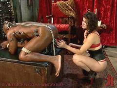 Bobbi Starr Dominates and Destroys