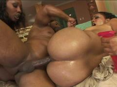 Big ass ebony whores get oiled to share a bbc in a threesome