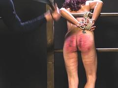 Cute slut whipped on all fours