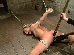 Rope tied blonde anal toyed on hogtie